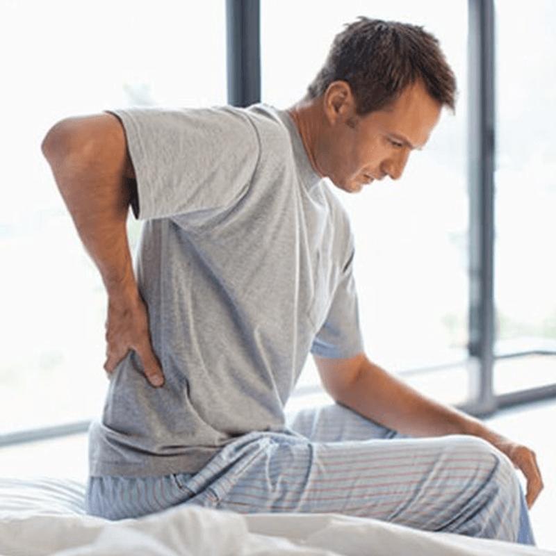 Low Back Pain, Hernia Anatomy